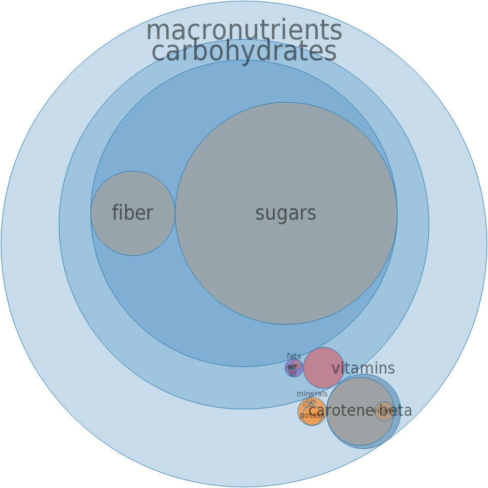 Apricots, canned, heavy syrup, drained -all nutrients by relative proportion - including vitamins and minerals